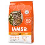 Free IAMS ProActive Health sample